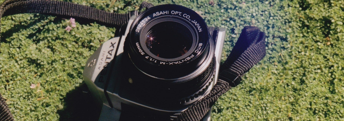 camera on greenery
