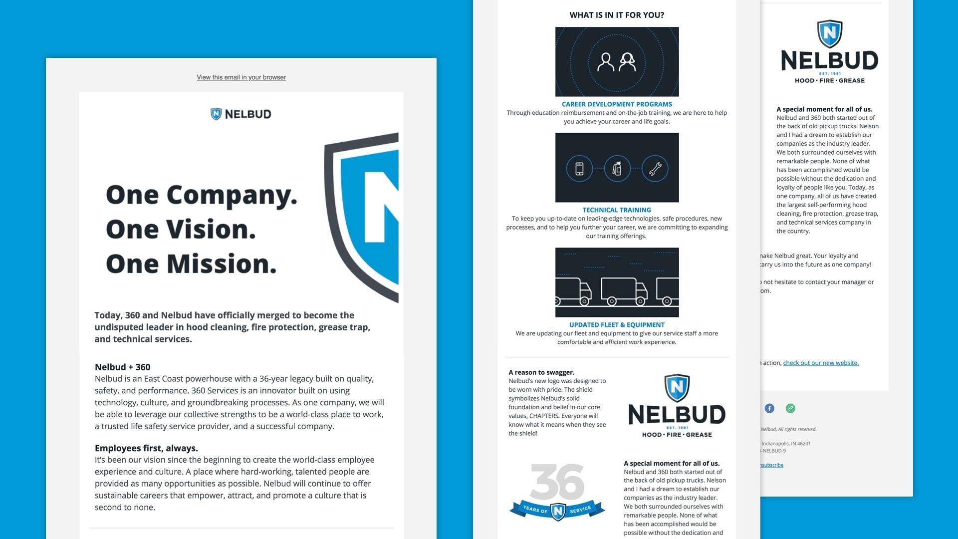 Nelbud Brand Launch Case Study Work Element Three