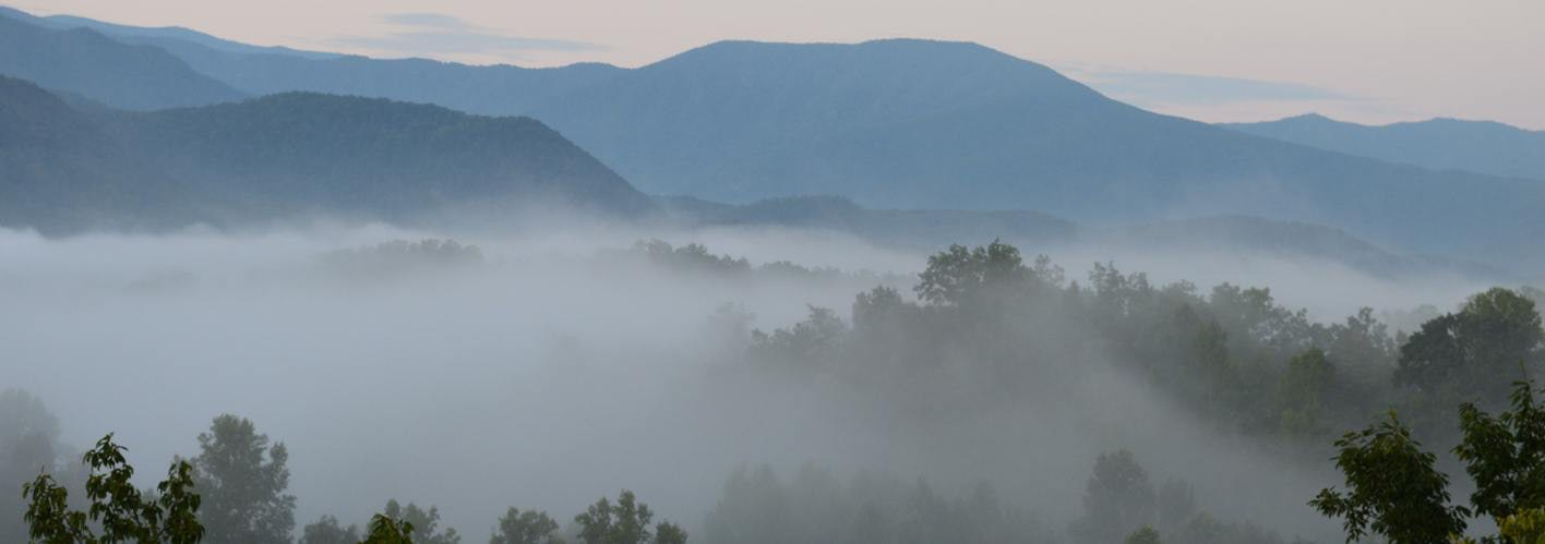Great Smokey Mountains with Fog